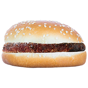 Kids Burger